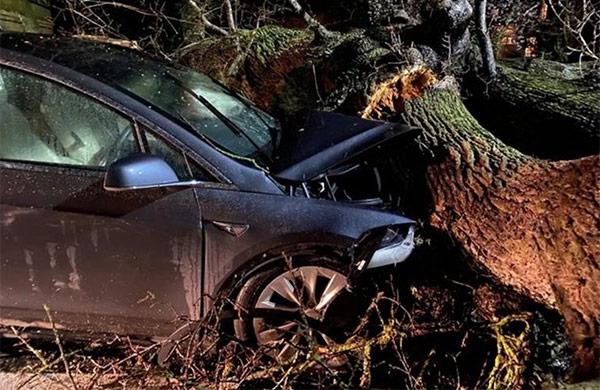 Una delle Tesla Model X colpite dalla caduta dell'albero